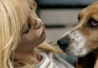 Breaking News : Brigitte Bardot mordue par son chien, il porte plainte
